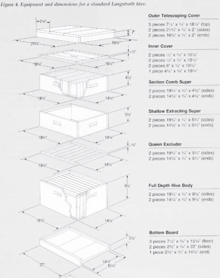 Dimensions Of A Langstroth Hive Bee Hive Plans Bee Keeping Bee Hive