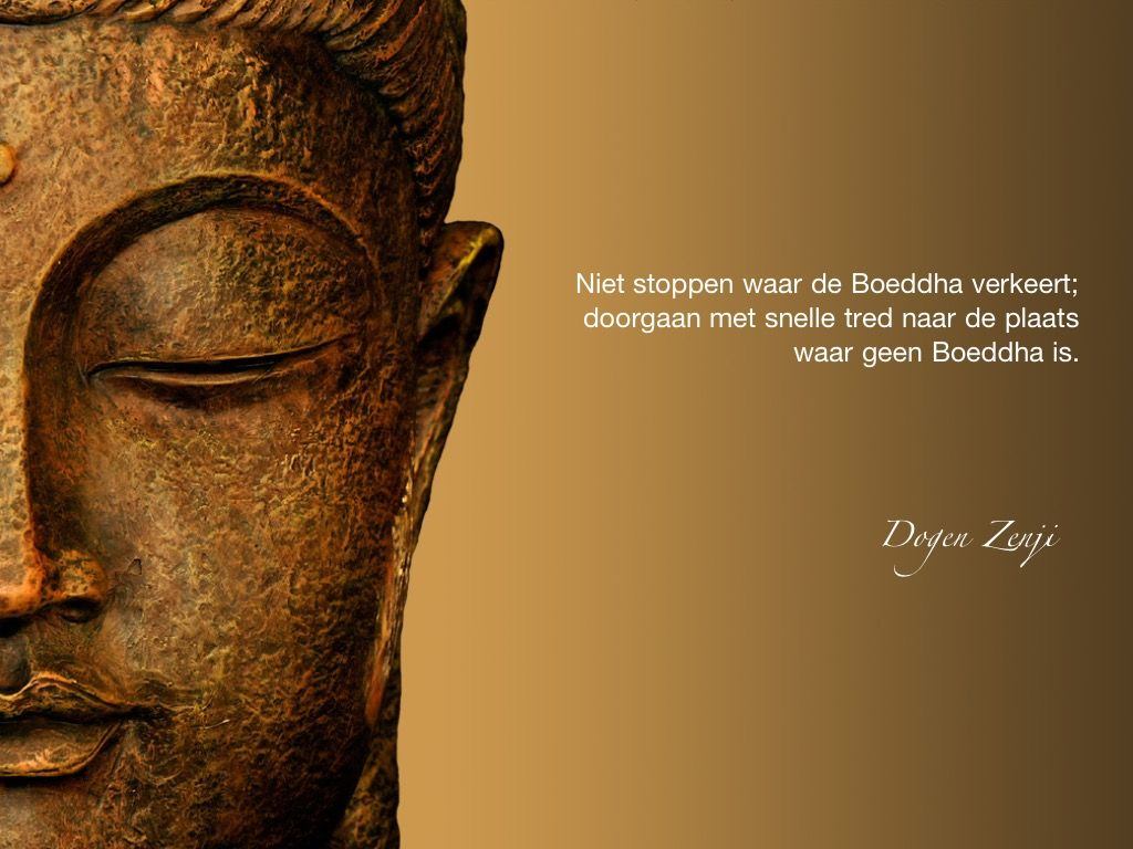 Niet stoppen waar de Boeddha verkeert; doorgaan met snelle tred naar de plaats waar geen Boeddha is. / Dogen Zenji