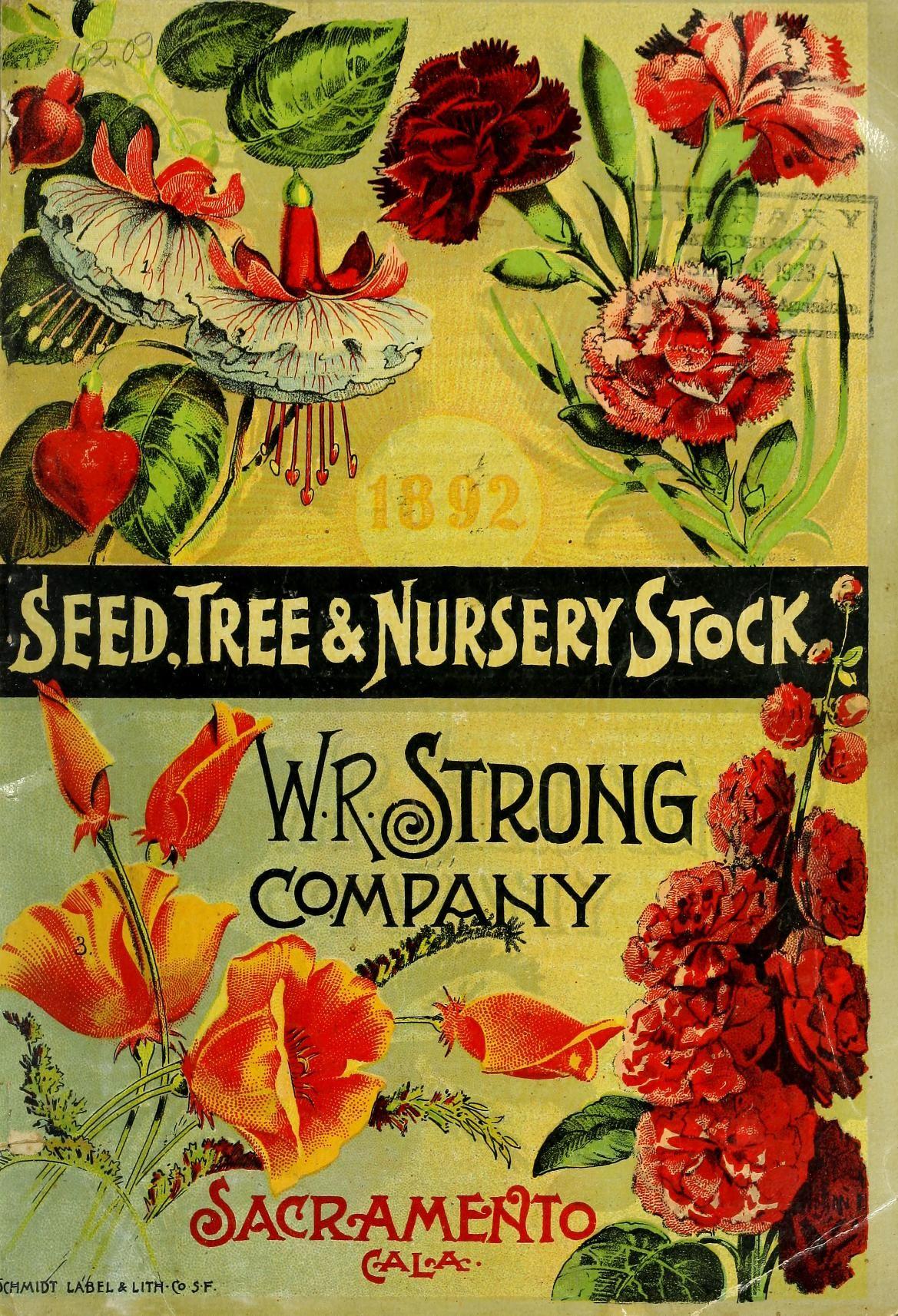 Seed Tree Nursery Stock 1892