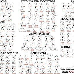 organic chem study guide Choose from 500 different sets of acs final exam chemistry flashcards on quizlet  the study of matter at the atomic and molecular level  organic chemistry 2 .