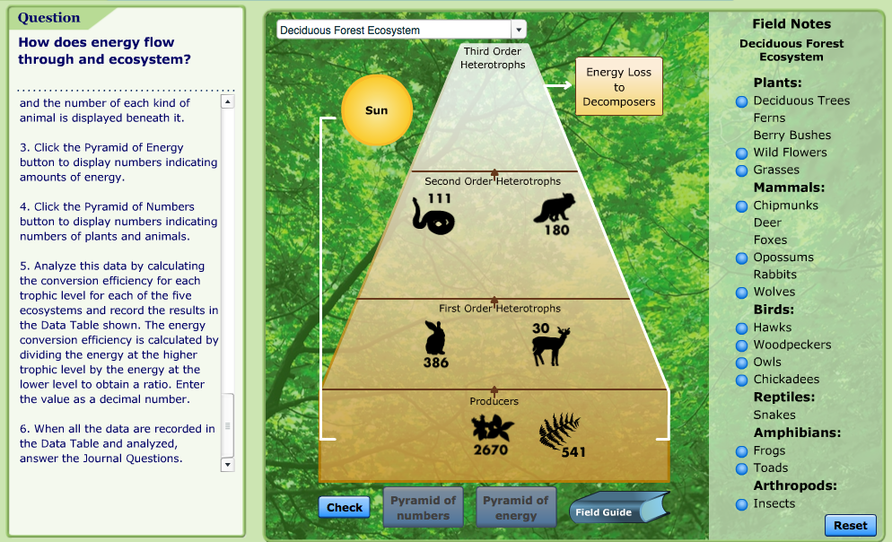 Virtual Lab How Does Energy Flow Through An Ecosystem Teaching Biology Life Science Lessons Biology Classroom