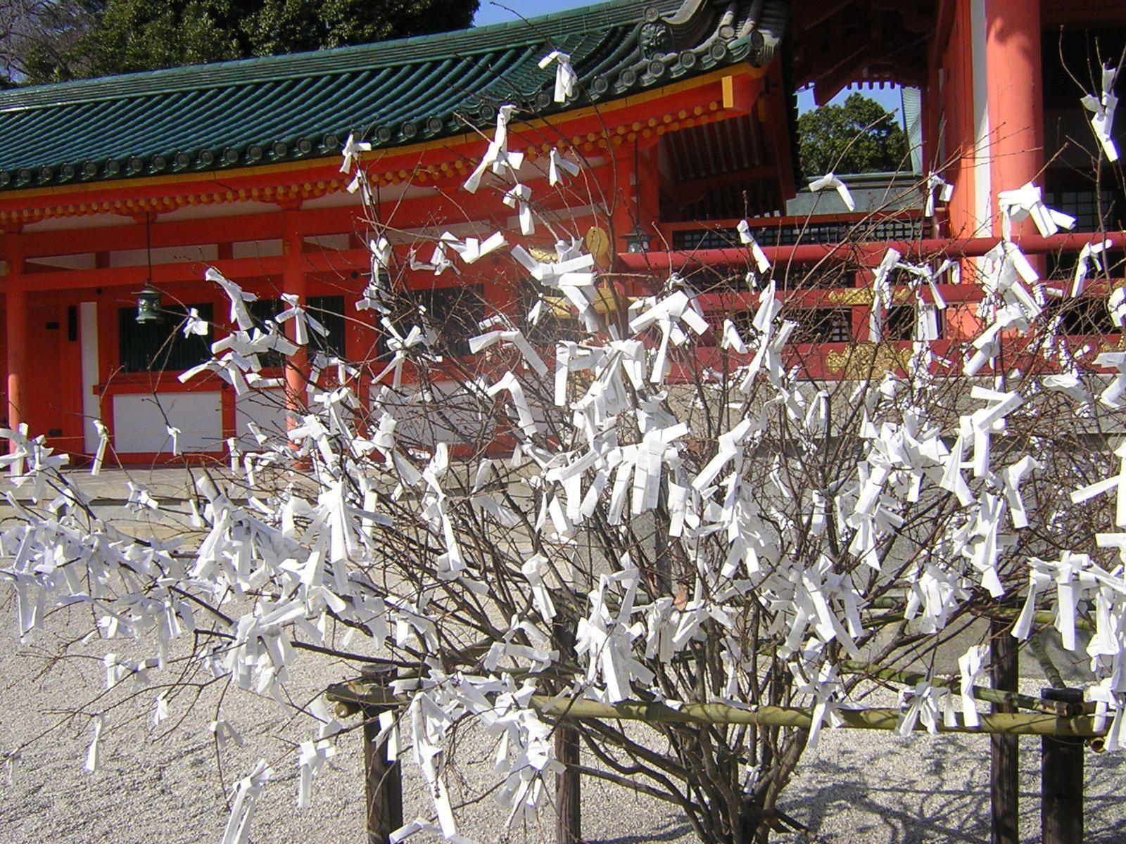 Prayer Tree - Kyoto   Holiday decor, Tree, Traveling by yourself
