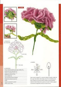 Crochet flower with diagram crochet flowers pinterest crochet carnation flower birth month flowers and their meanings januarys birth flower the carnation comes in several different meaning ccuart Images