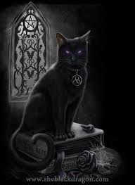 Image result for dog wicca familiar   Witchery and