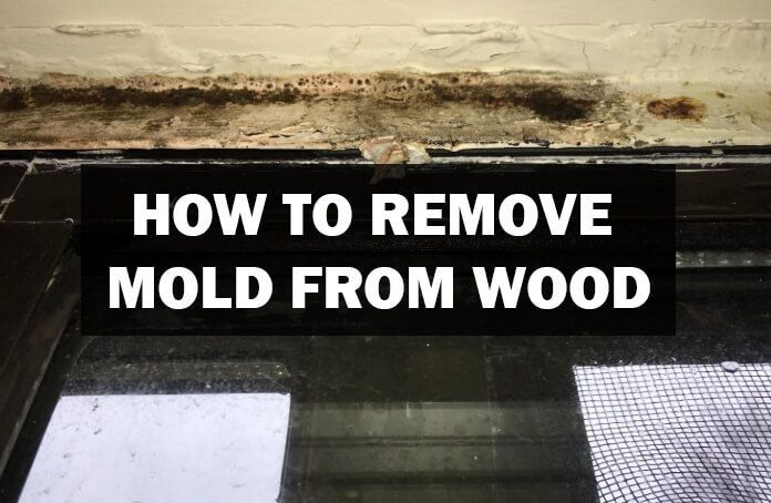 Photo of How to Remove Mold From Wood – Woodwork Made Easy –  La meilleure image selon vo…
