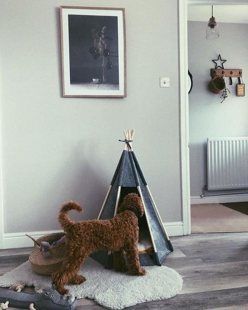 —@nest.number.8 - Back when we had Teds Teepee 😢 I honestly adored it but he sadly refused to go in as it was too snug! madedotcom can you pretty please bring out a bigger version?! . #livingroom #petsofinstagram #puppiesofinstagram #poodlesofinstagram #redpoodle #miniaturepoodle #livingroomdecor #neutralstyle #myhomestyle #interiormilk #homeinspo4you #wallart #dogbed #peignoir #farrowandball #homedesign #stylingmynest #fromwhereistand #creativehome #homesweethome #madedotcom #myhomevibes #hygg
