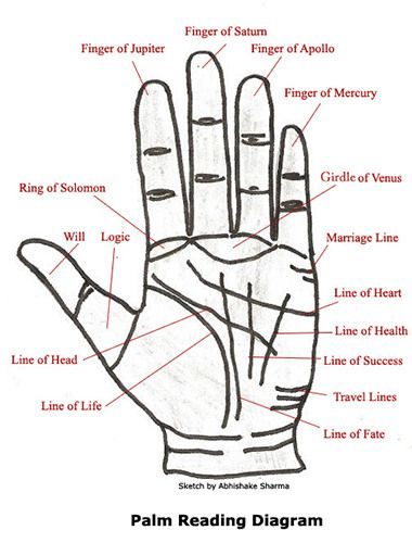 A palm reading chart youll want to refer to over and over again palm reading diagram and basic definitions how fun ccuart Gallery