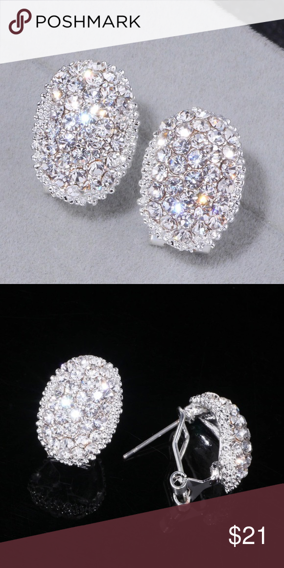 LUXURY earrings with sparkle and glitter Boutique