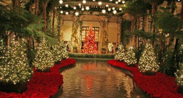 Espectaculares jardines navideños - jardines navideos