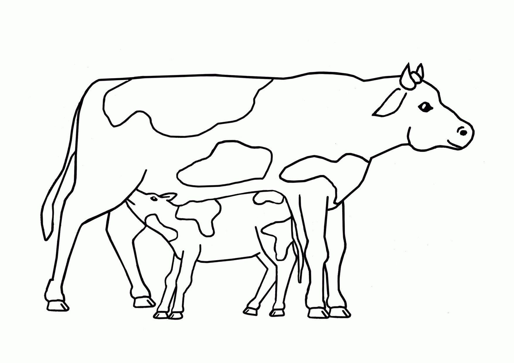 Bildergebnis Fur Kuh Vorlagen Ausdrucken