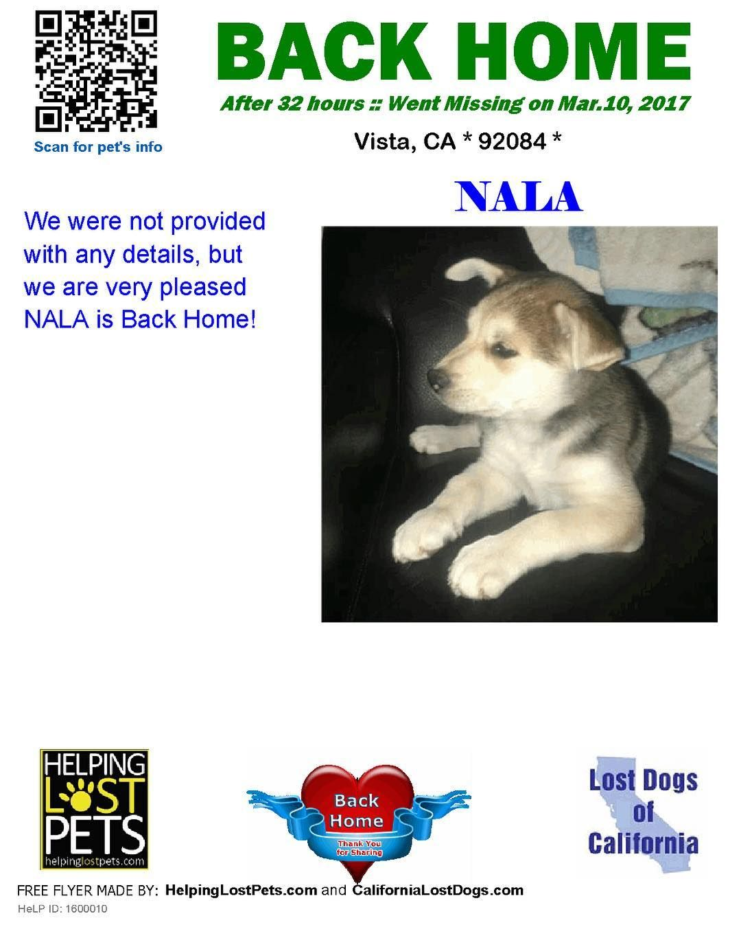 We Are Very Happy To Report Nala Is Back Home After 1 Day Welcome Home Nala Reunited Lostdogsca Helpinglostpets Help Id 1 Losing A Dog Losing A Pet Dogs