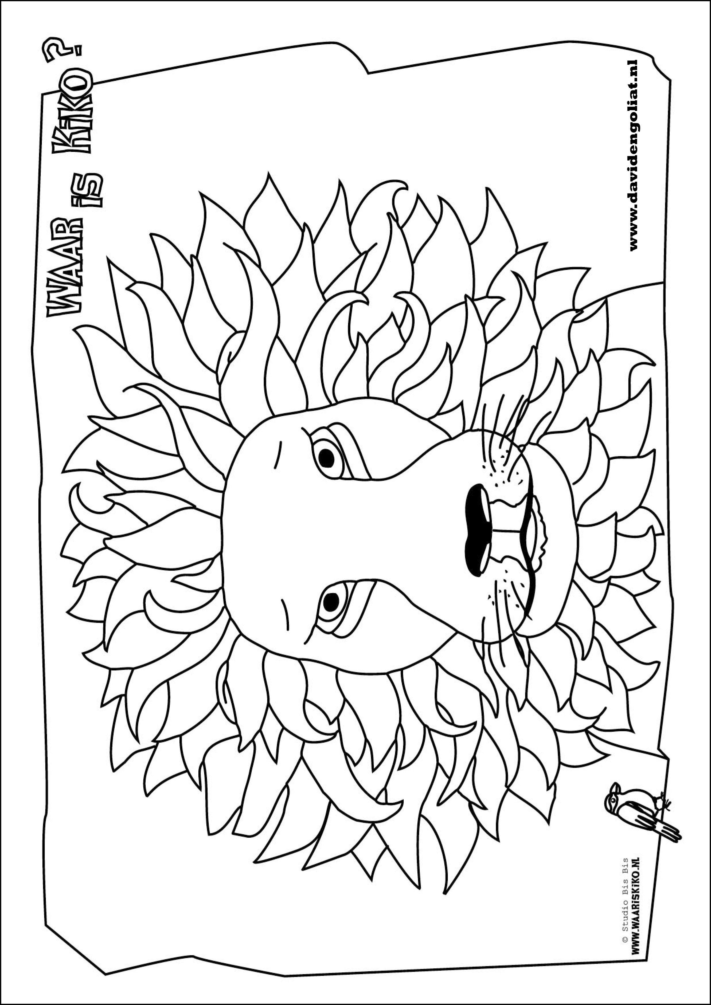 Leeuw Kleurplaat Bij Het Boek Waar Is Kiko Van Cindy Van De Ven Kleurplaten Boek Maken Prints