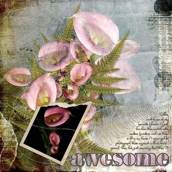 CALLAS: Callas are (one of) my favorite flowers.  I made this page with Bricolage 104 from Jen Maddocks, available at Digital Scrapbooking Studio here: http://www.digitalscrapbookingstudio.com/jen-maddocks-designs/