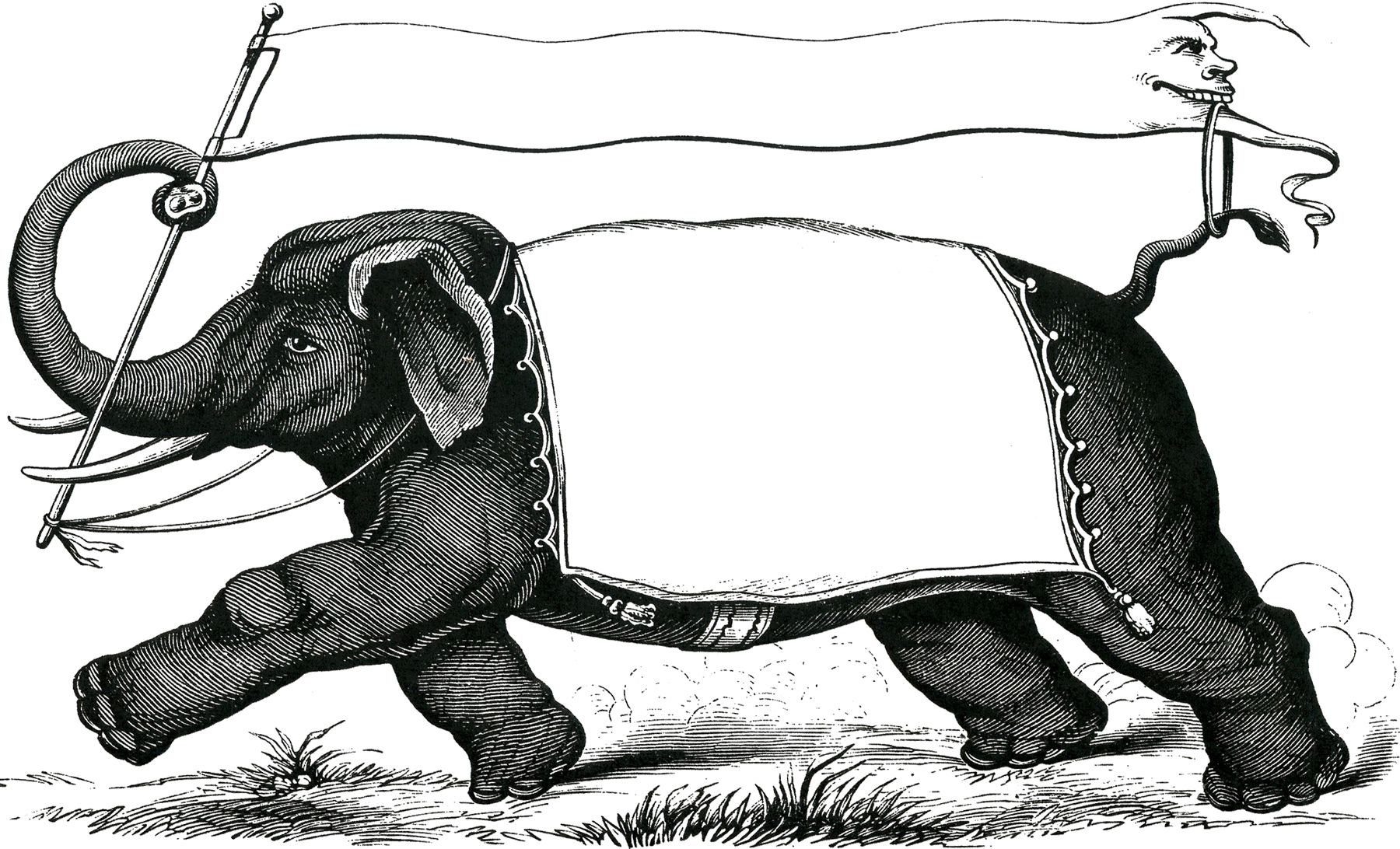 Vintage Elephant Label Images
