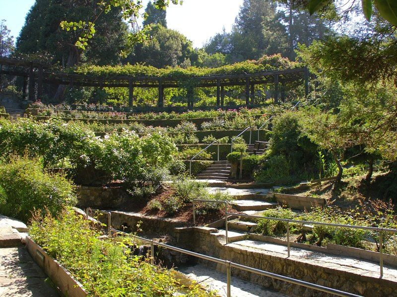 Amphitheater, Berkeley Rose Garden Garden design, Garden