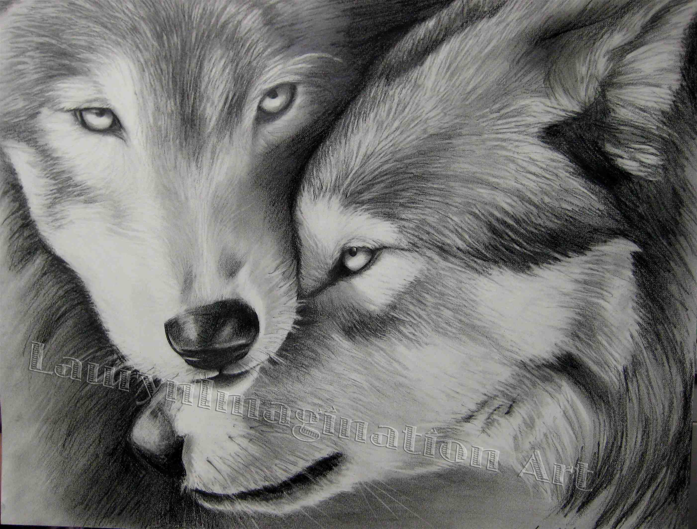 Two Wolves Jasreflections Wolf Drawing Two Wolves Wolf Love