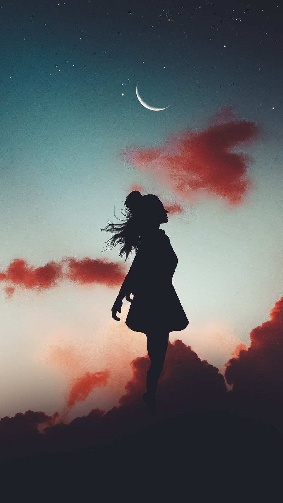 Levitate In The Sky Silhouette Photography Art Wallpaper Aesthetic Wallpapers