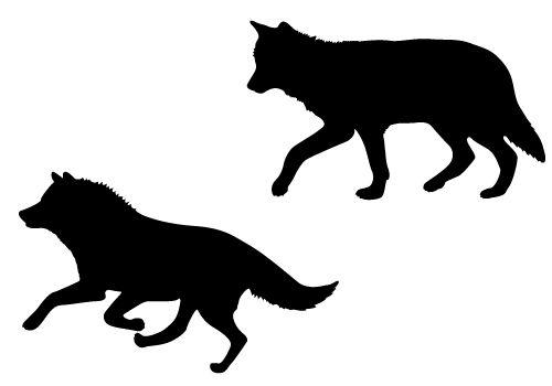 Running Coyote Silhouette