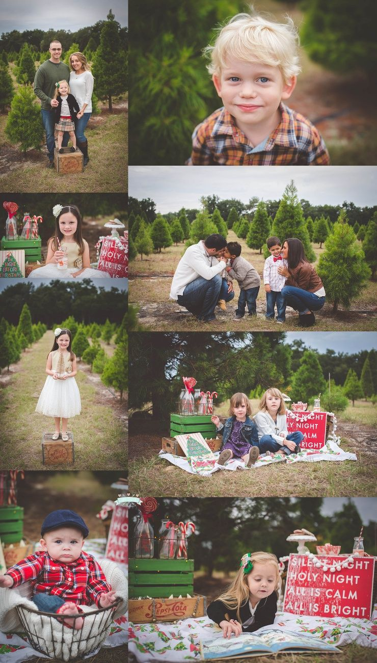 Christmas Tree Farm Mini Sessions.Tree Farm Christmas Holiday Mini Sessions By Tara Merkler