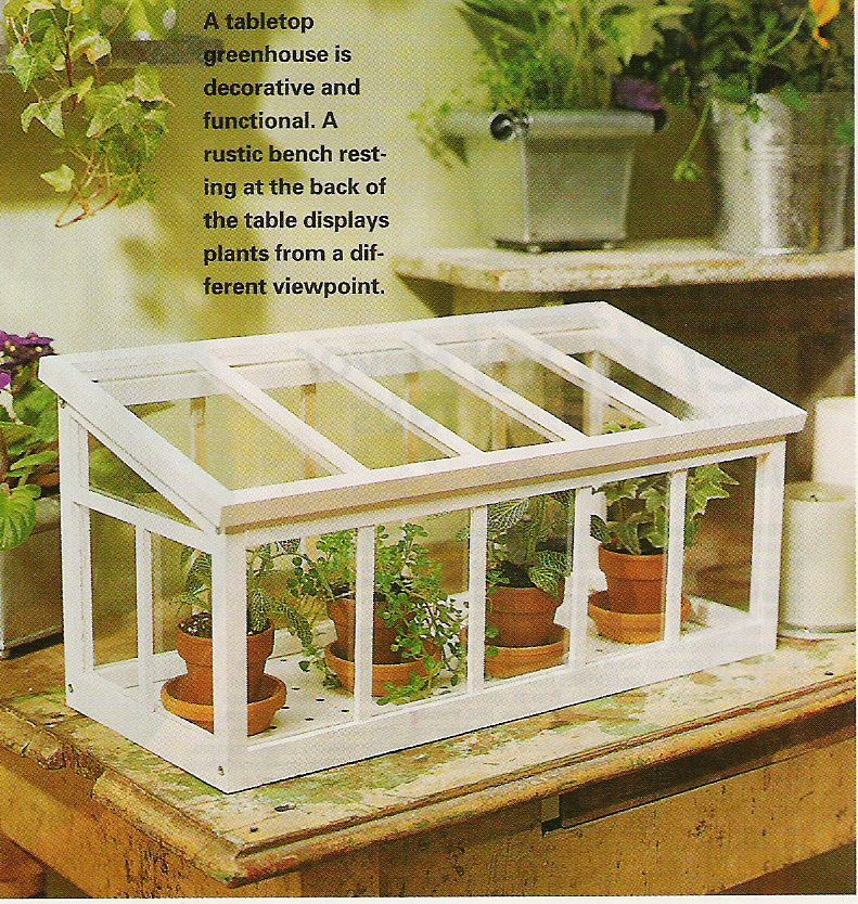 Tabletop Greenhouse   Google Search