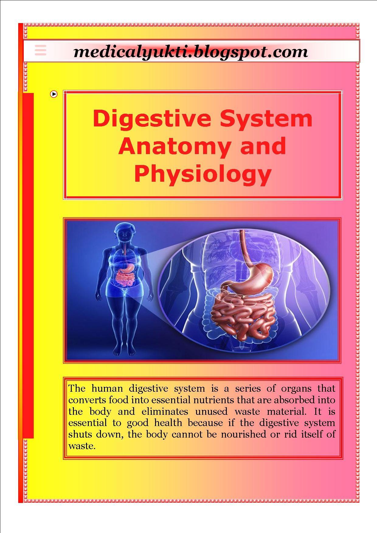 Digestive System Anatomy Physiology