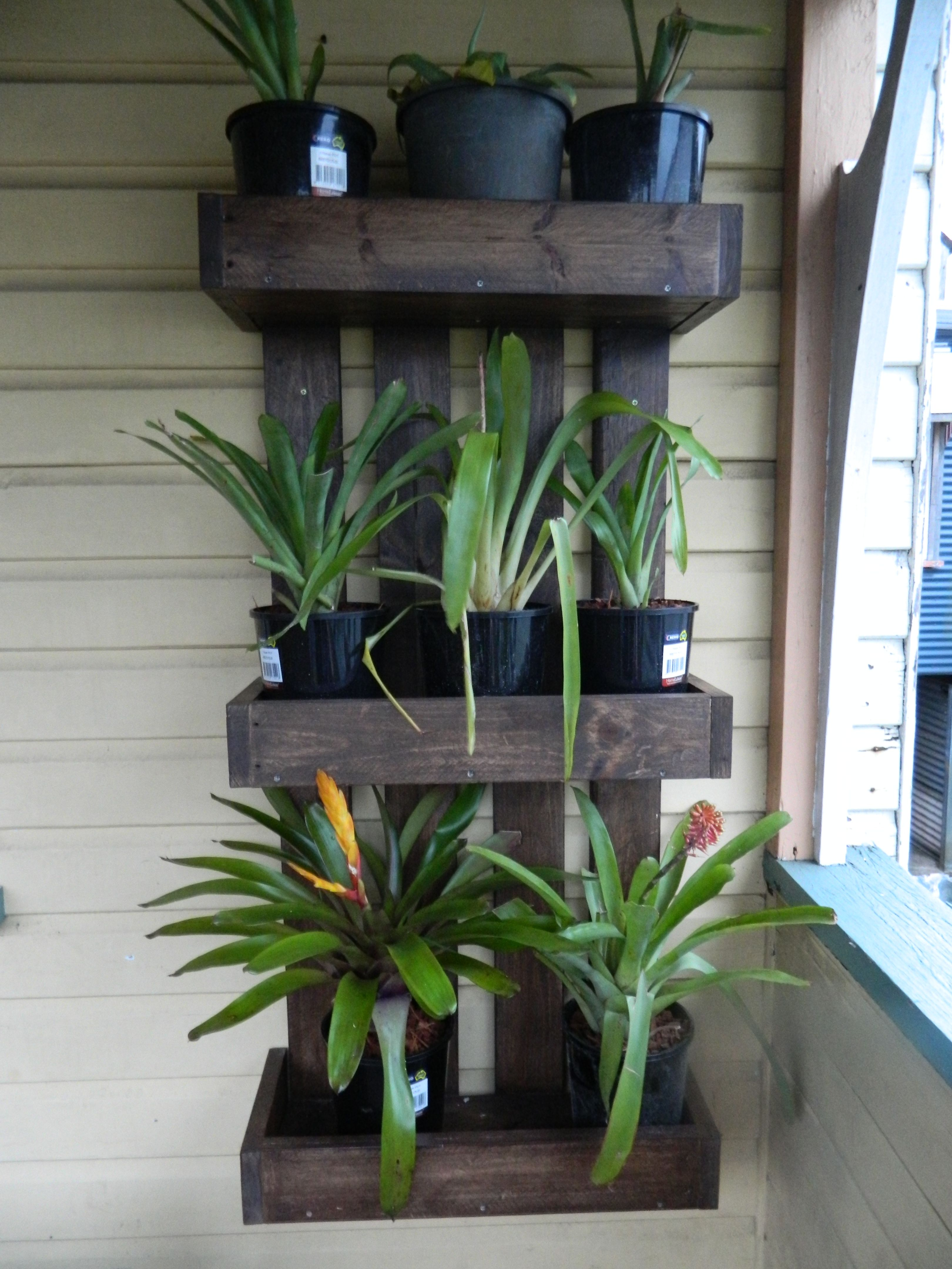 Plant Shelving Indoor Pallet Plant Stand Pallet Projects Diy Plant Stand