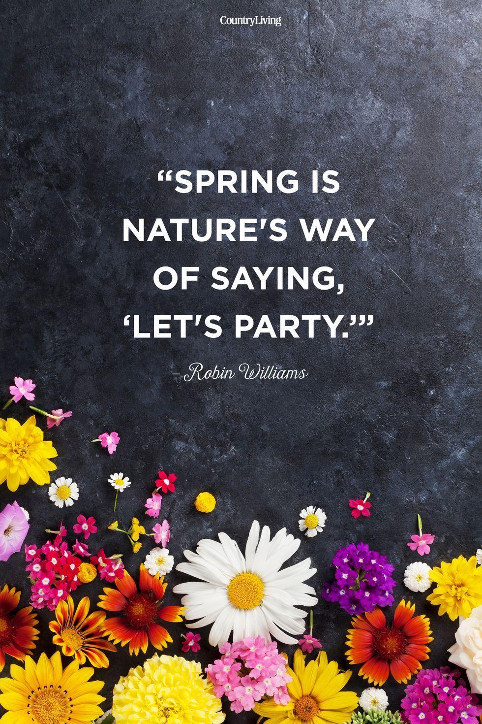 Robin Williams Spring Quote Spring Spring Season Spring Equinox Springer Spring Breakers Spring Break Spri Spring Quotes Springtime Quotes Blossom Quotes