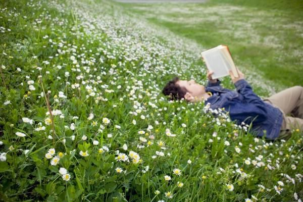 guy reading in field of daisies