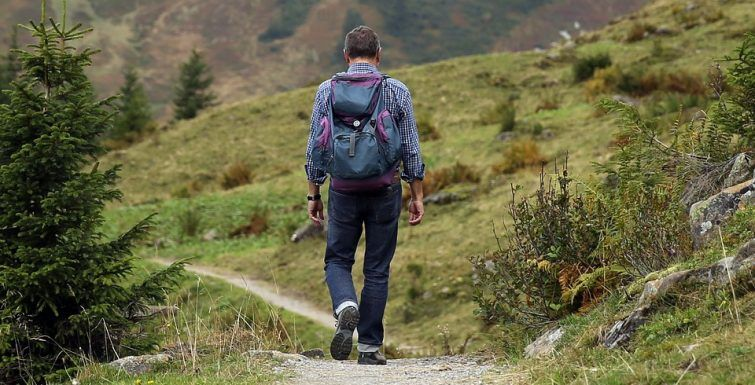 How Walking in Nature Changes Your Brain