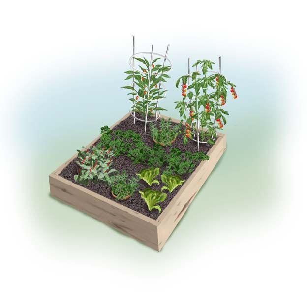 Planting Plan For An Easy & Tasty Kid's Garden. 4x4 Raised