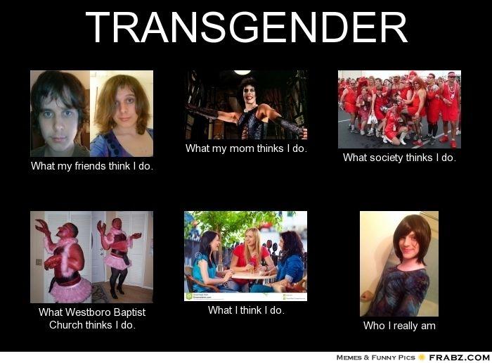 Funny Transgender Memes Google Search Transgender