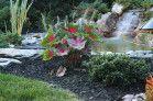 Landscaping Design Wayne NJ | Lou's Landscaping & Design