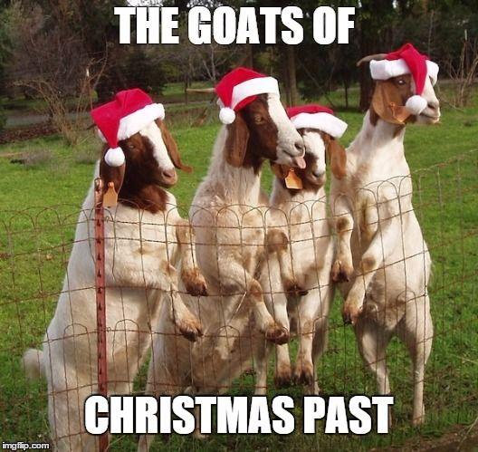Christmas Goat.Goats Of Christmas Past Original Jokes Memes Etc