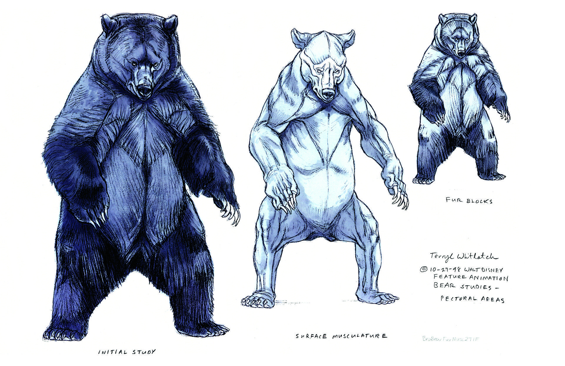 ArtStation - Brother Bear Concept Art, Terryl Whitlatch | Monstrum ...