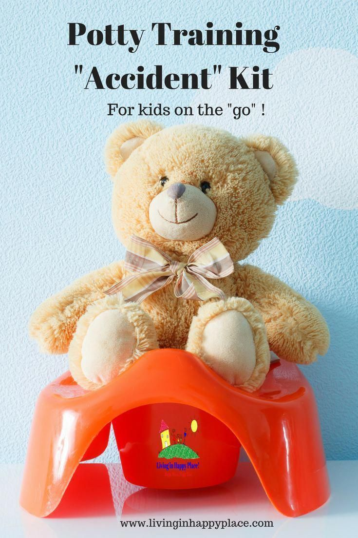 Potty Training Quot Accident Quot Kit Whether Potty Training Your