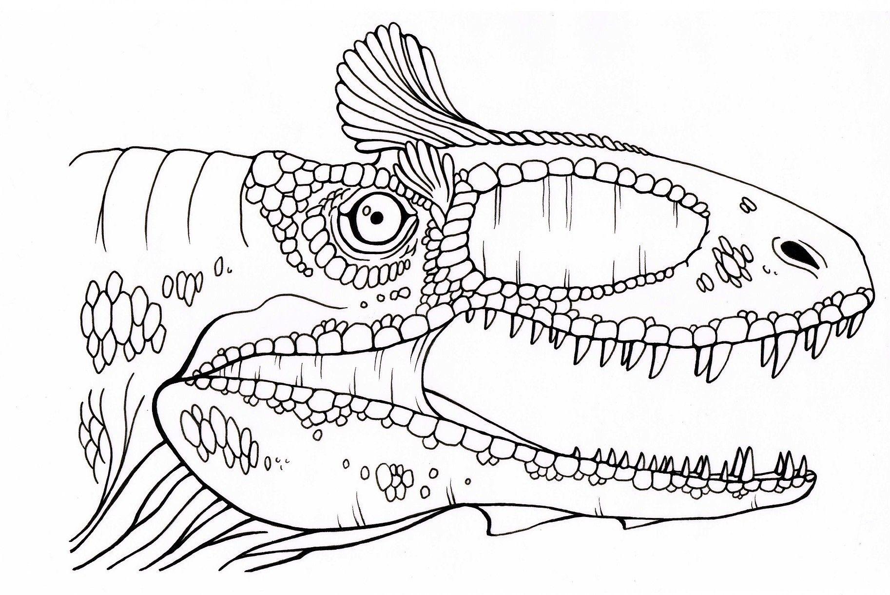 Dinozaur Kolorowanka