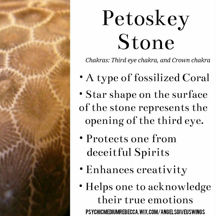 Petoskey Stone crystal meaning