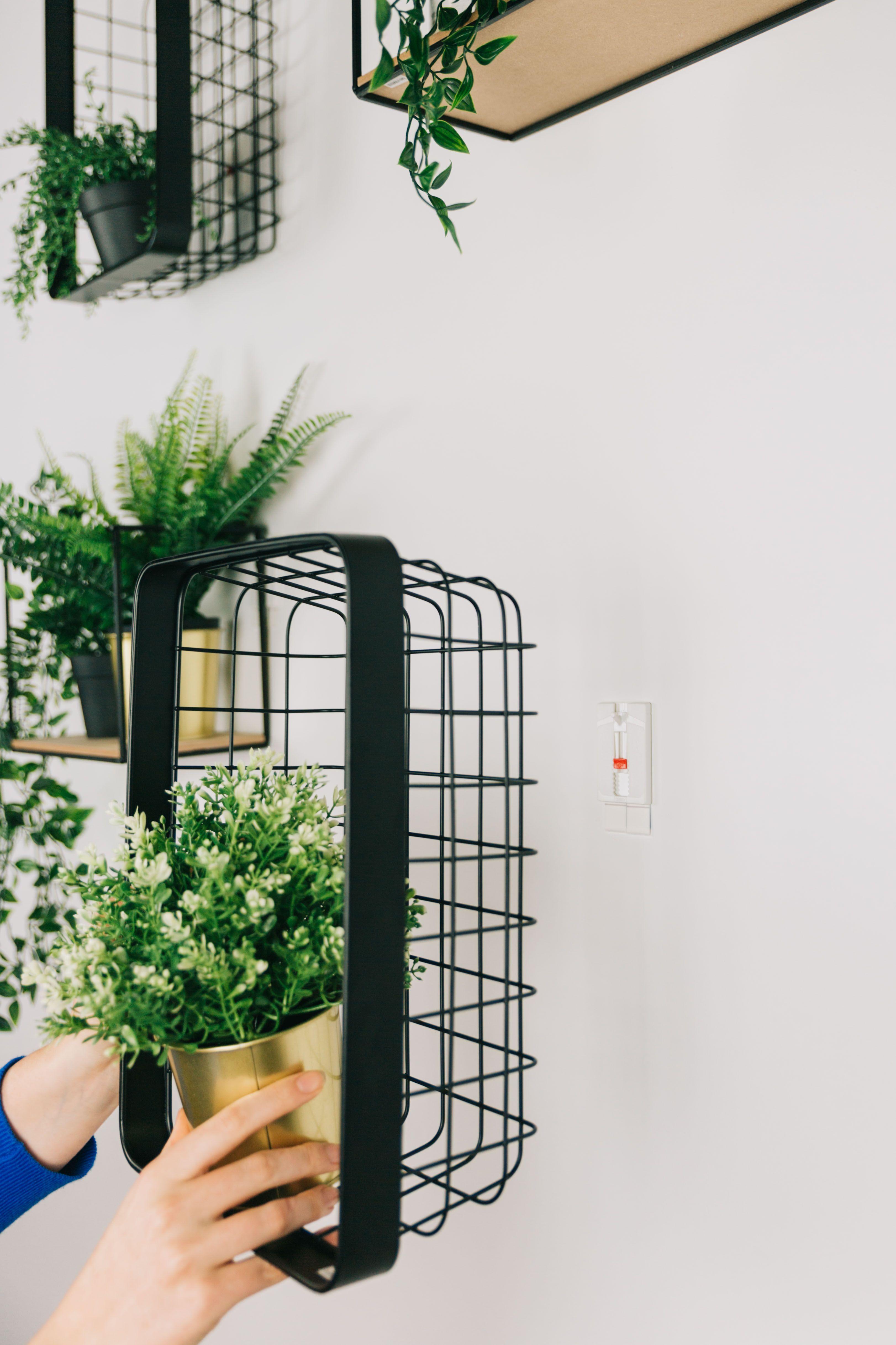 DIY: planten aan de muur geven je je woonkamer een creatieve twist - Roomed