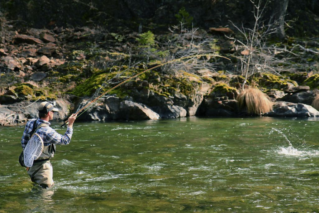 Northern California Fly Fishing Guide Anthony Carruesco Hooks Up In An Emerald Upper Sacramento Run Fly Fishing Sacramento River Fishing Places