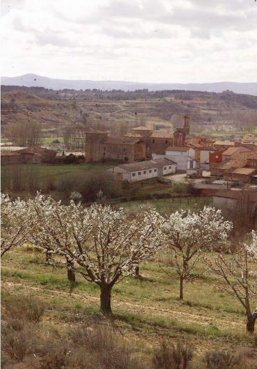 La floración de Caderechas recibe el guiño del turismo japonés http://www.rural64.com/st/turismorural/La-floracion-de-Caderechas-recibe-el-guino-del-turismo-japones-4768