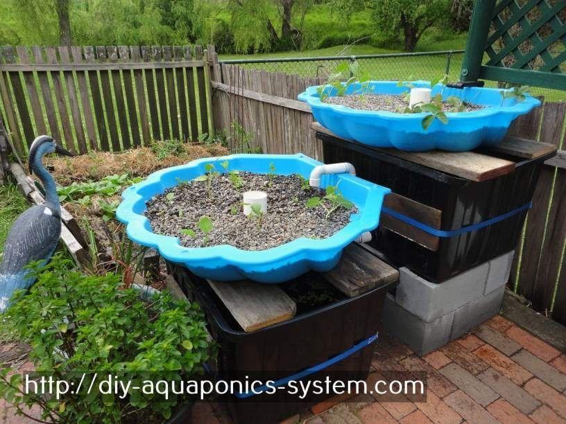 Aquaponics Books Pdf Diy Hydroponics Hydroponic Strawberries