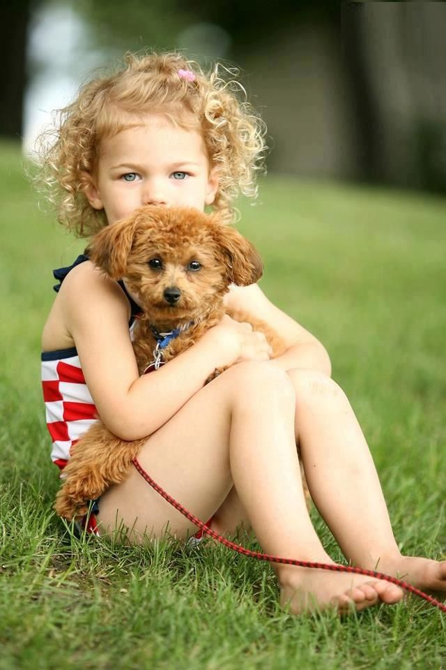 21 Easy Hairstyles For Girls With Curly Hair Little Girls Toddlers Curly Girl Hairstyles Dogs And Kids Kids Hairstyles