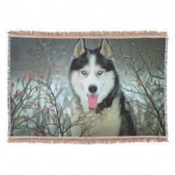 Outstanding Siberian Huskies Detail Is Offered On Our Site Have