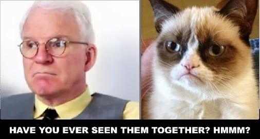 Steve Martin vs. Grumpy Cat #GrumpyCat #Meme