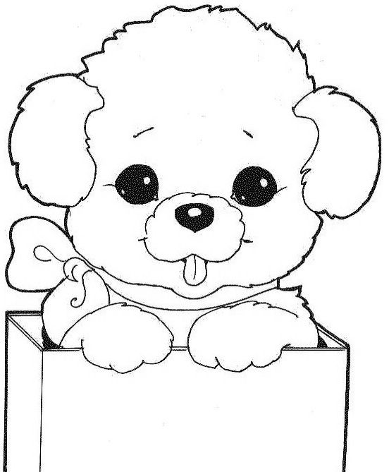 Resultado de imagen para conejos animados para dibujar | sigue tu ...