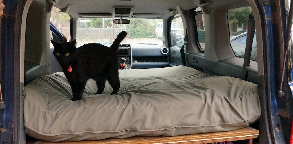 Suv Bed Platform Part - 44: Dogs And Honda Element Bed Platform | Steph Davis - High Places