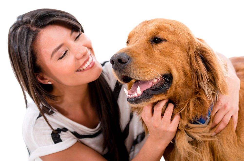 Can dogs really sniff seizures fight animal cruelty