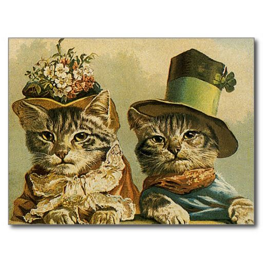 vintage_victorian_cats_in_hats_funny_silly_humor_postcard-rafa65428d6134779a992bab726d52c9f_vgbaq_8byvr_512.jpg 512×512 pixels