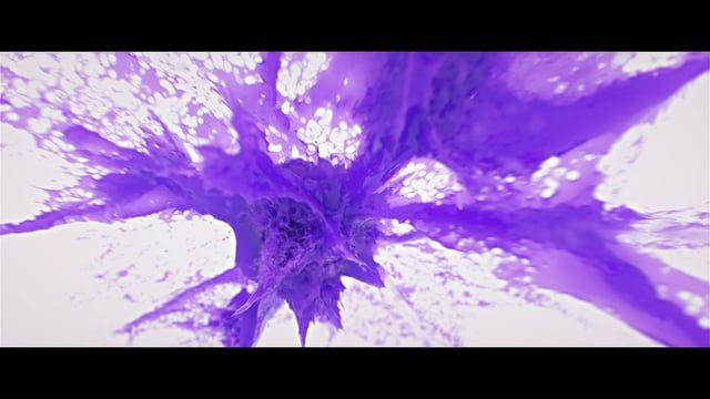 CG / VFX / Motion Graphics / Concept Design Software: Cinema 4D, Octane Render, Turbulence FD, X-particles, Realflow, After Effects Music: Skrillex - Fuck That ------------------- https://www.behance.net/gallery/31036825/Showreel-2015