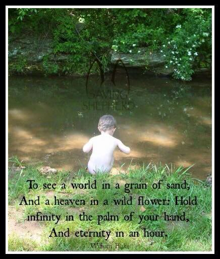 To see a World in a Grain of Sand And a Heaven in a Wild ...